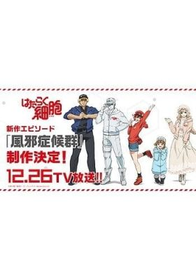 Cells at Work Special (Dub)